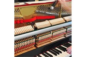 Dịch vụ Lên dây đàn piano uy tín tại BIên Hòa, Đồng Nai